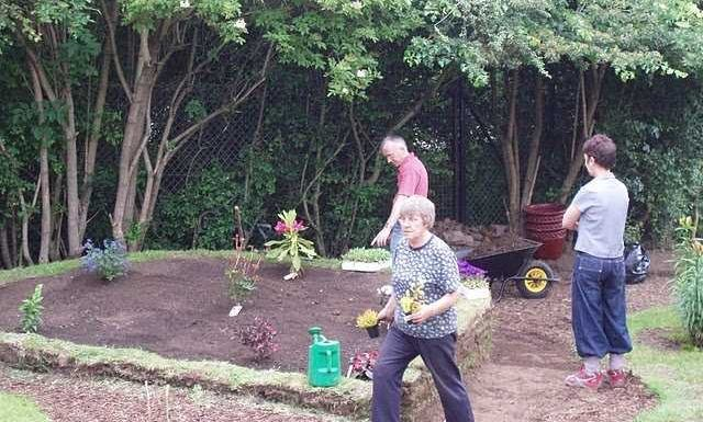 My Yard Looks Gross – Quick Tips
